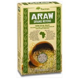 Araw grain moyen - RACINES