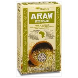 Araw gros grain - RACINES