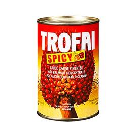 Sauce graine épicée - TROFAI SPICY